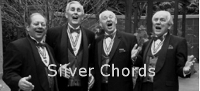 Silver Chords